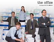 American office business english Tv show
